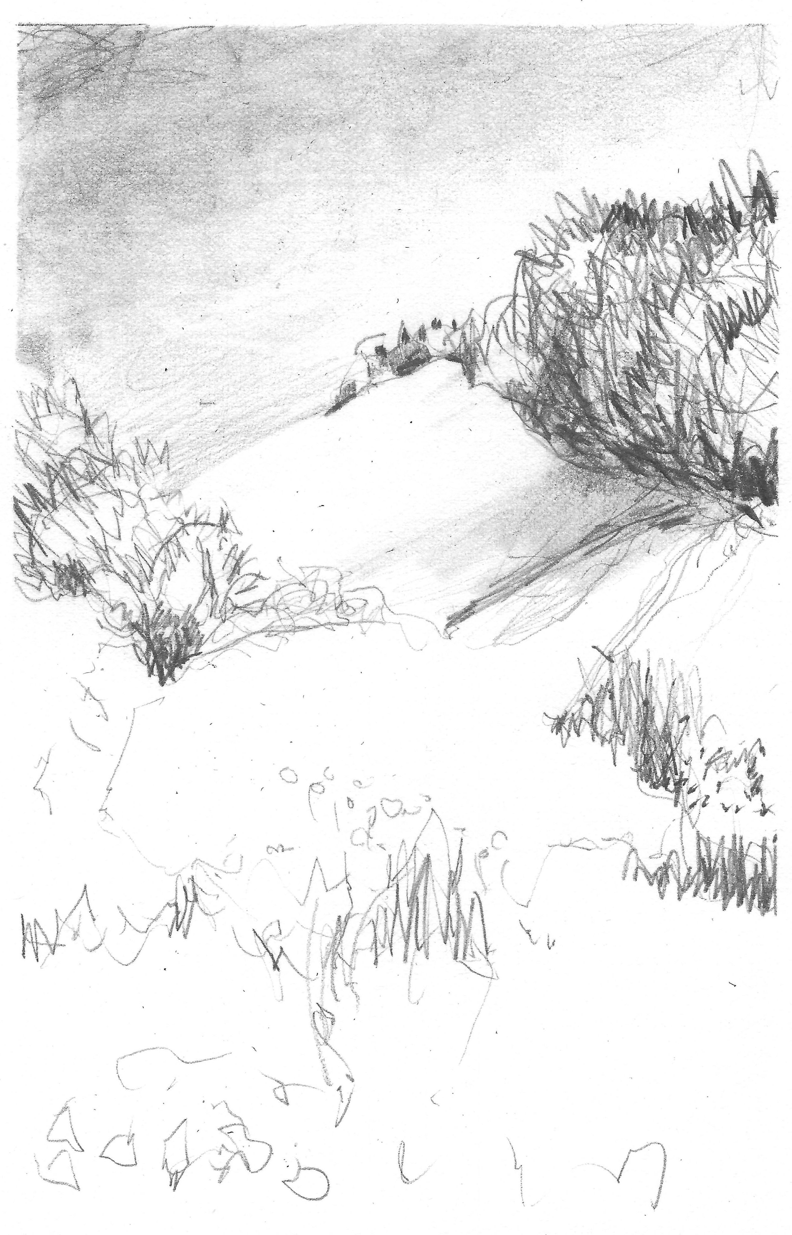 Out of Reach. Pencil. unmounted/unframed. 12x18cm. Fabriano Artistico. HP 140lbs. £95.00