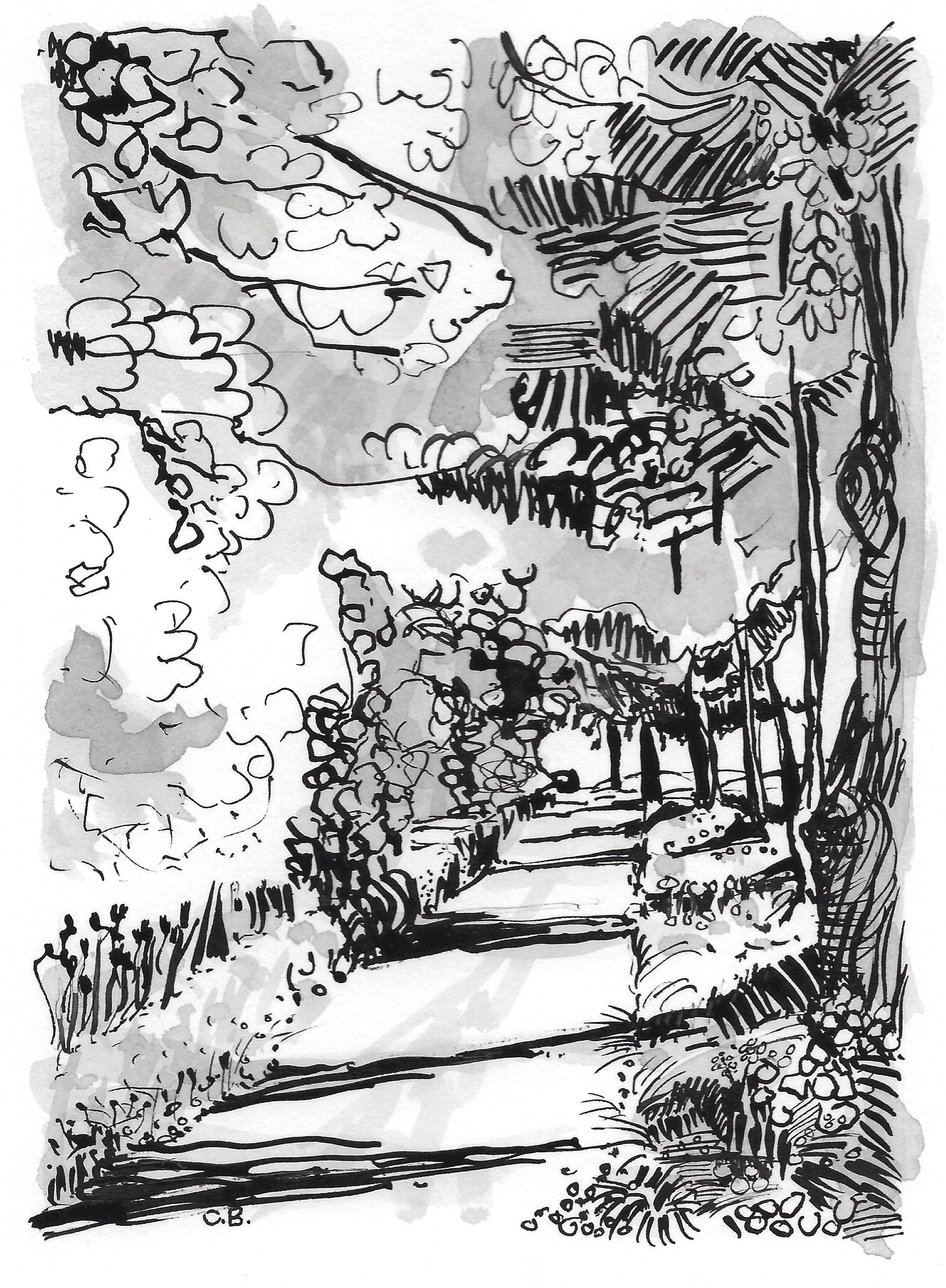Leaving. pen and ink. 10x15cm. Wide double mount. Fabriano Artistico. HP 140lbs. £95.00