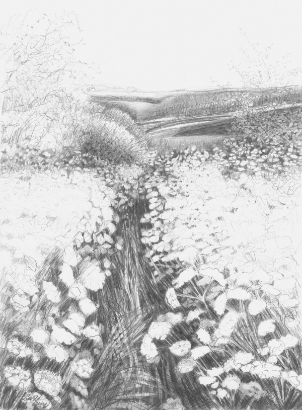 'Pathway' pencil drawing