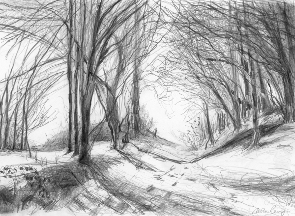 Elkstone Woods. pencil